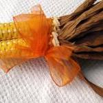 Corn Yellow with Orange Rib..